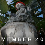 MY-FRAMES-NOVEMBER-2012