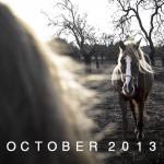 MY_FRAMES_OCTOBER_2013